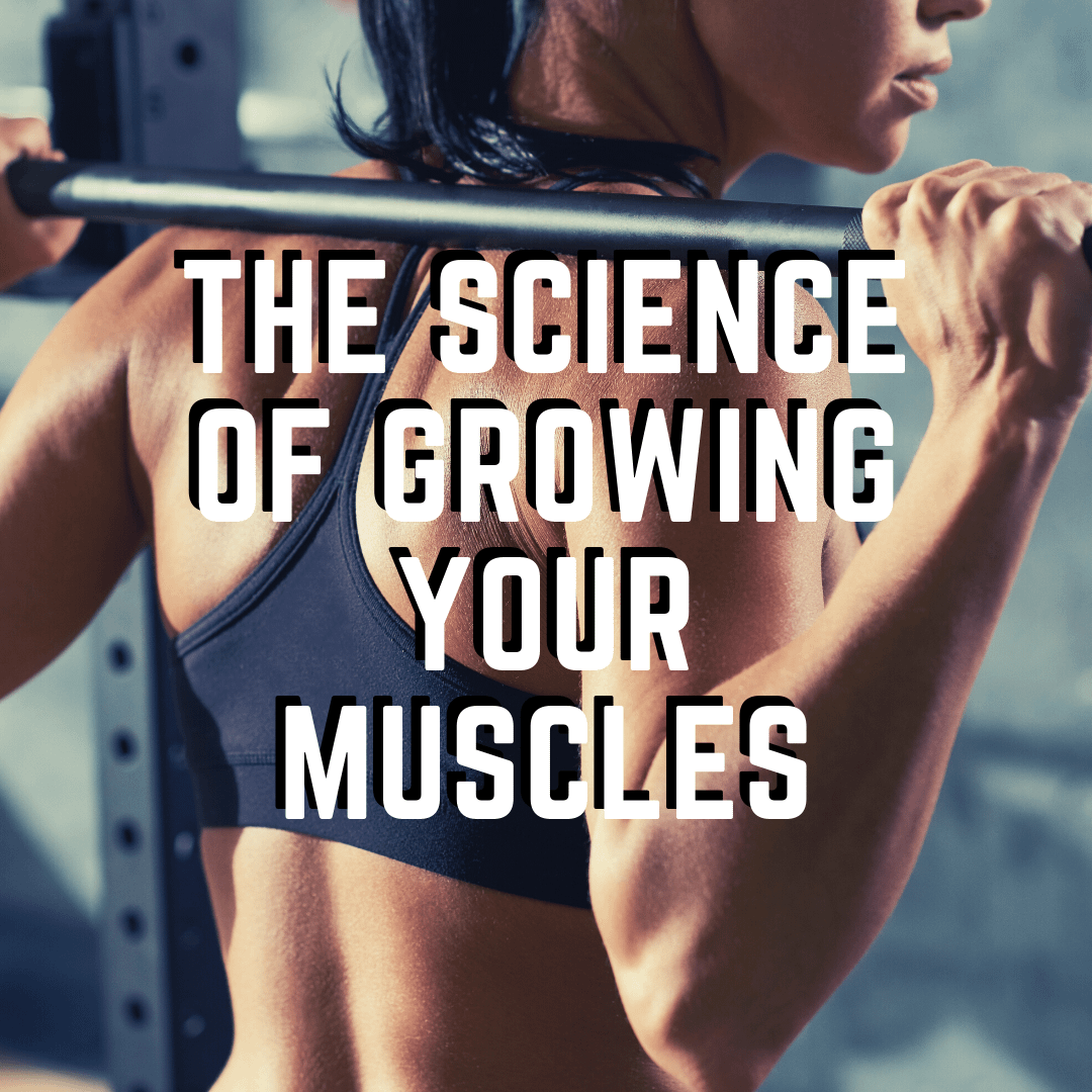 The Science of Growing your Muscles – Protein Synthesis and Training for Hypertrophy
